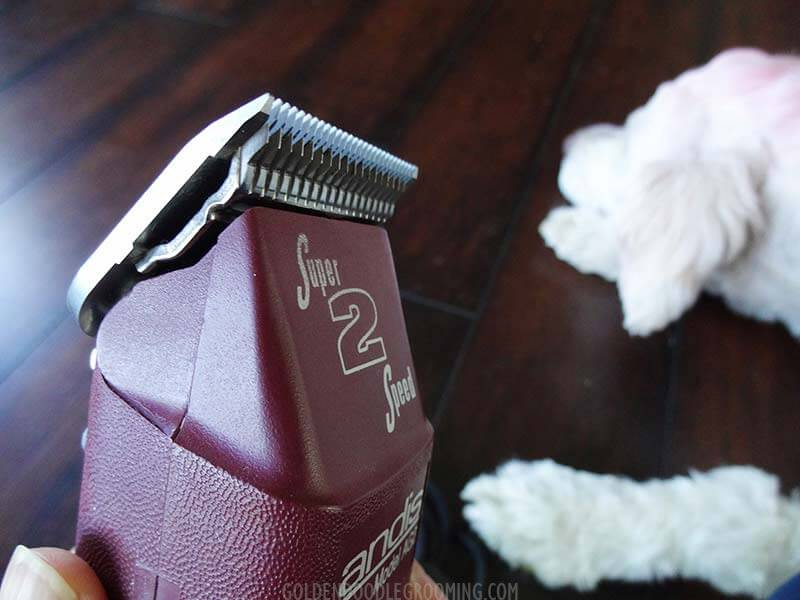 Andis professional grade pet clipper